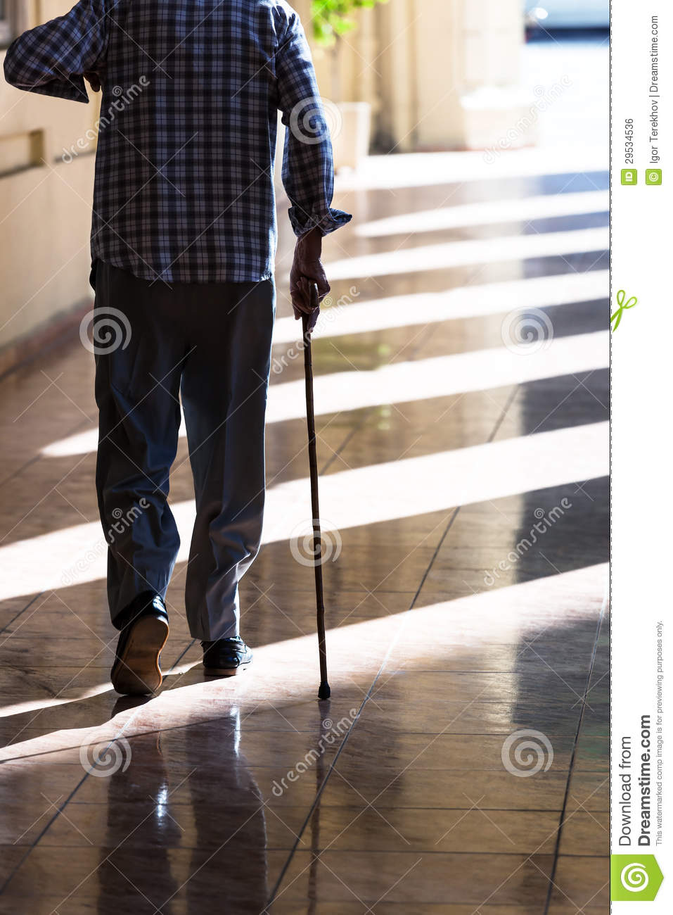 Old Man With A Cane Royalty Free Stock Image - Image: 29534536