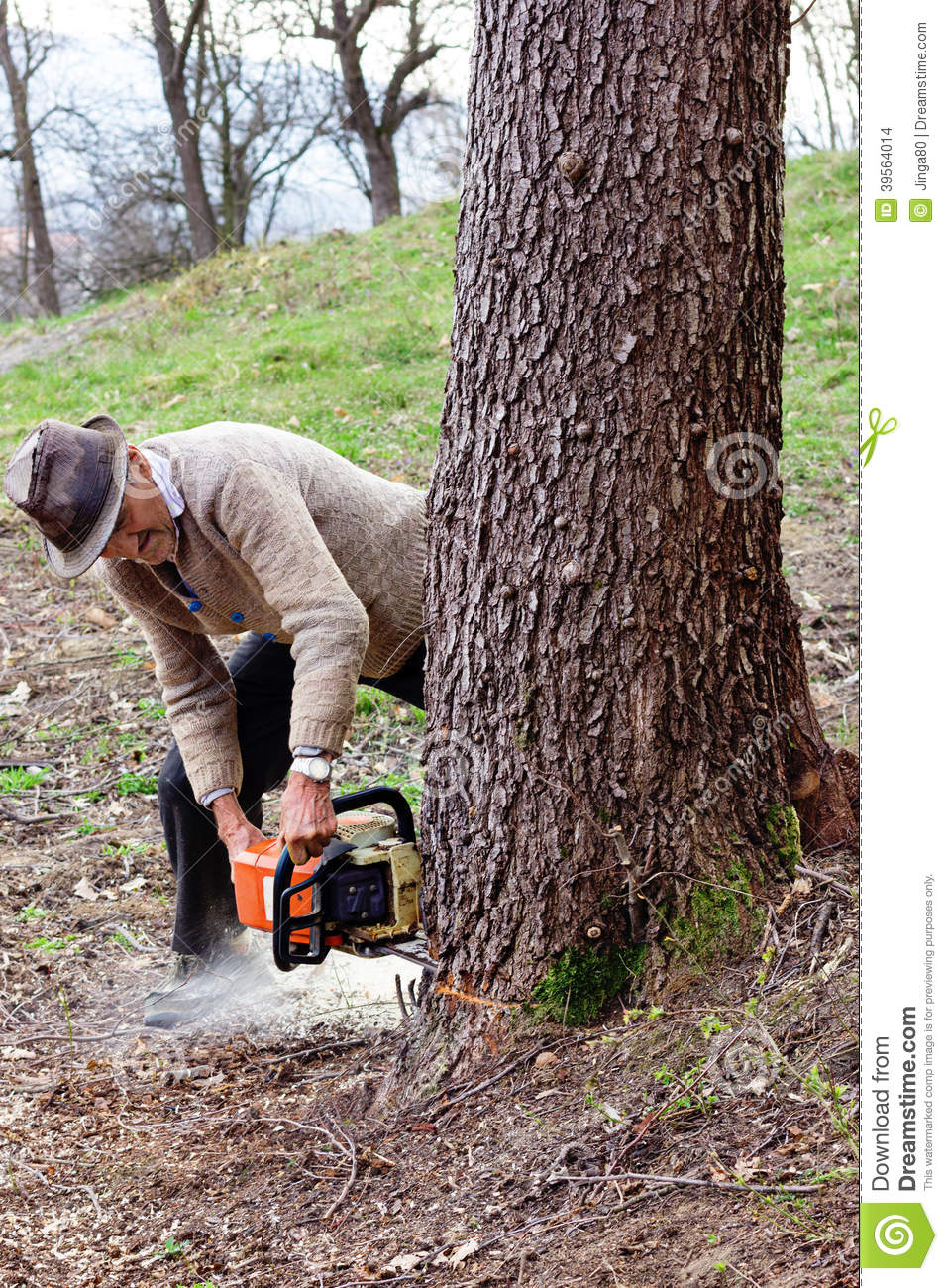 Tractor Man On Cutting Trees : Old man cutting trees using an electrical chainsaw stock