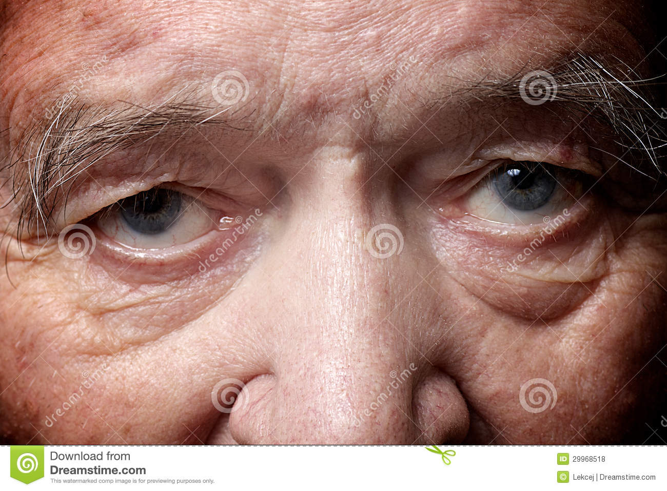 Old Man Eyes Royalty Free Stock Photos - Image: 29968518