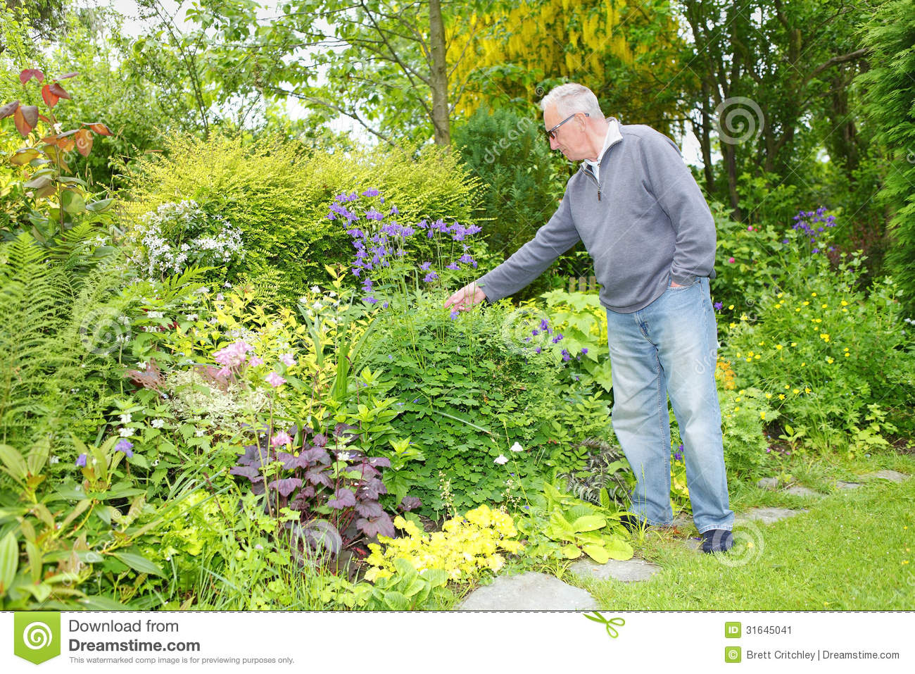 Old man gardening in his garden stock image image 31645041 for Tending to the garden