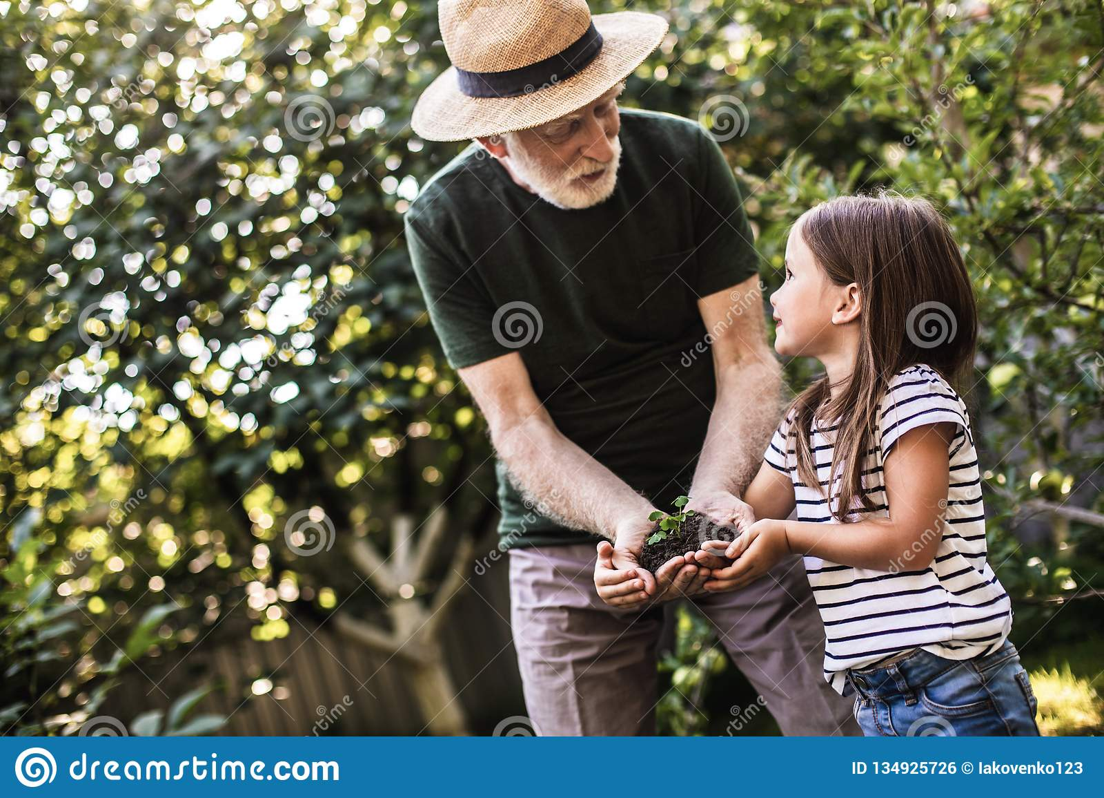 Young Girl Old Man Gangbang