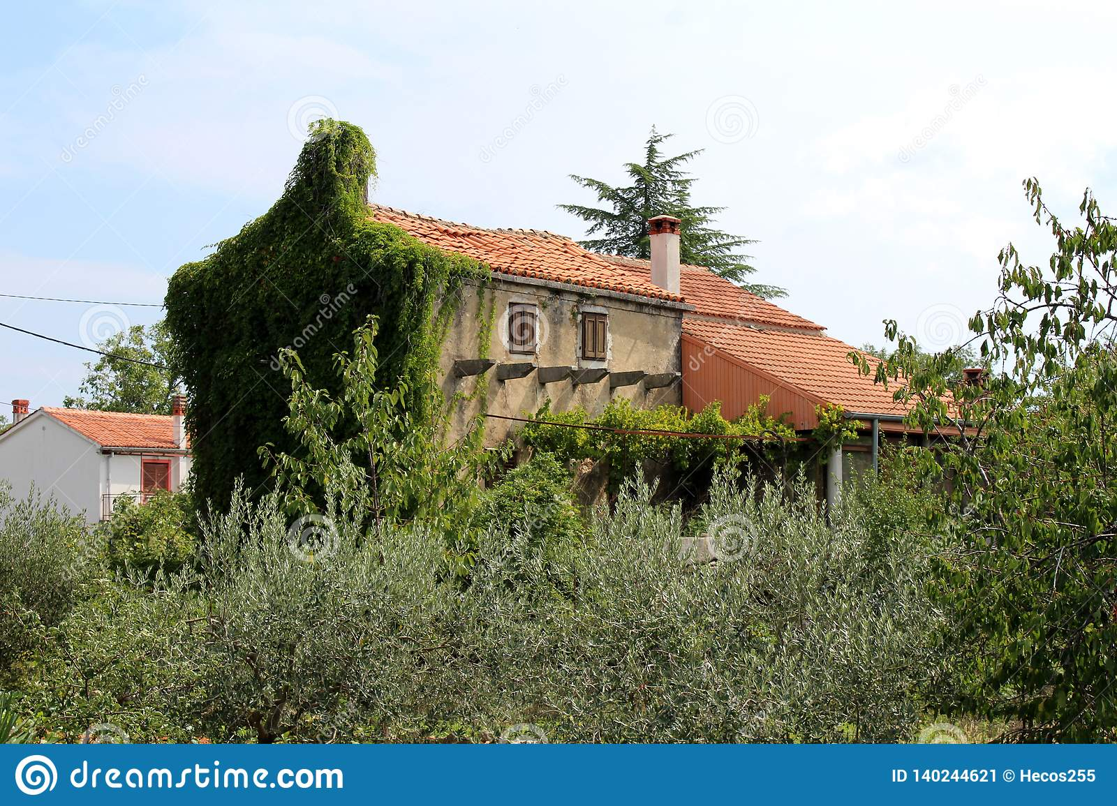 Old Mediterranean Tall Narrow Family House With ...
