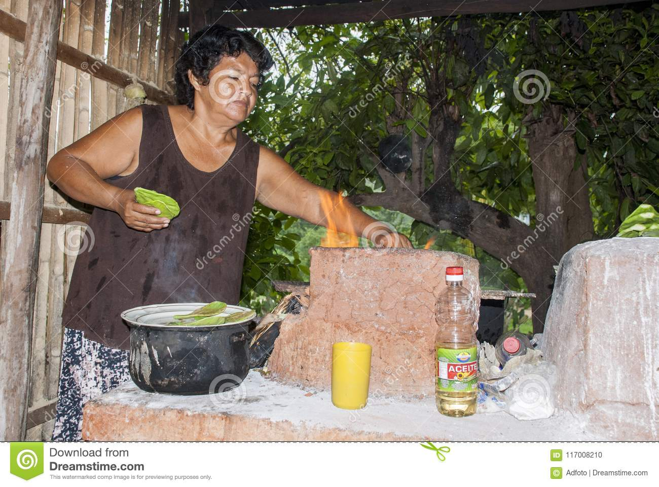 The Tried and True Way of Mexican Bride In Step-by-step Detail old mexican lady cooking prickly pear cactus traditional way food september huatulco mexico 117008210