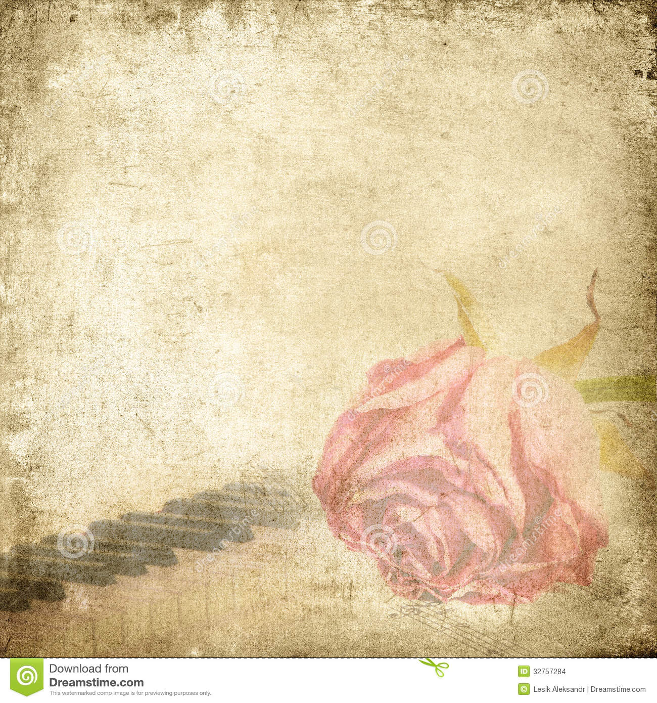 Old Paper Wallpaper: Old Music Background With Rose. Vintage Background. Stock