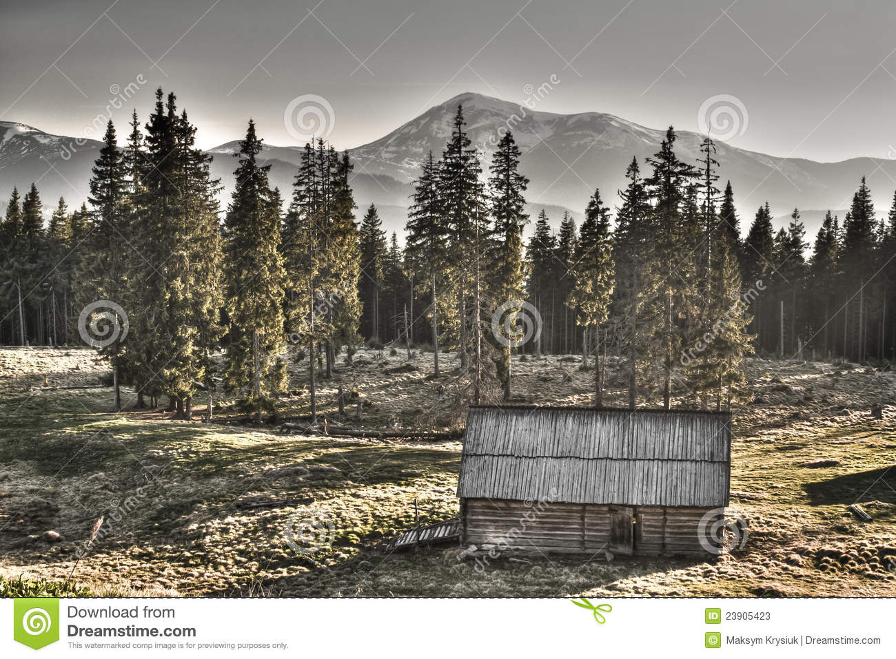 Gloomy House In The Woods Royalty Free Stock Image