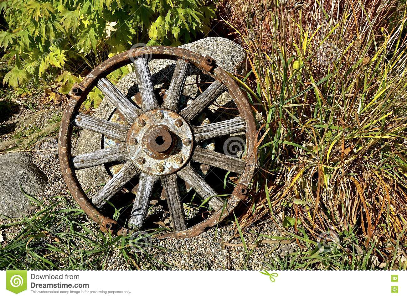 Old Oak Wooden Wagon Wheel Stock Photo Image Of Round 81087748