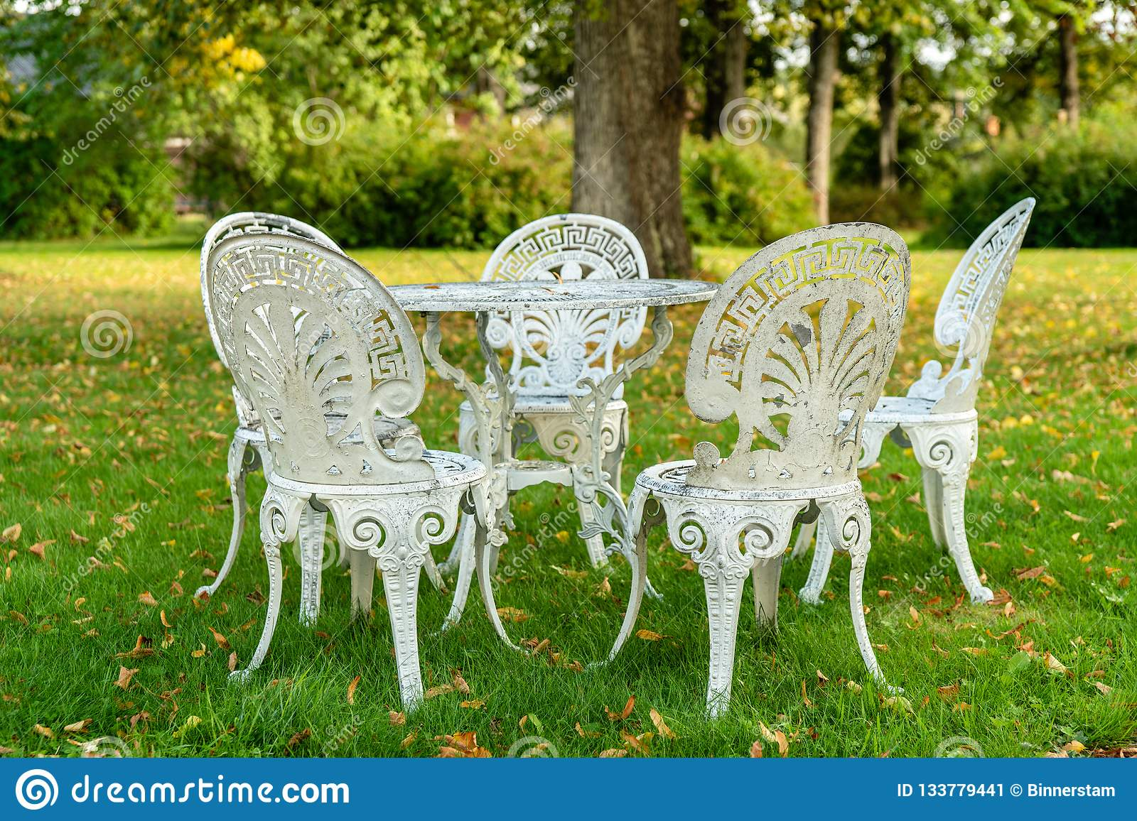 Old White Outdoor Furniture Made Of Metal, Chairs And Table. Standing In  Sunshine In An Autumn Colored Garden With Green Grass And Yellow Leafs