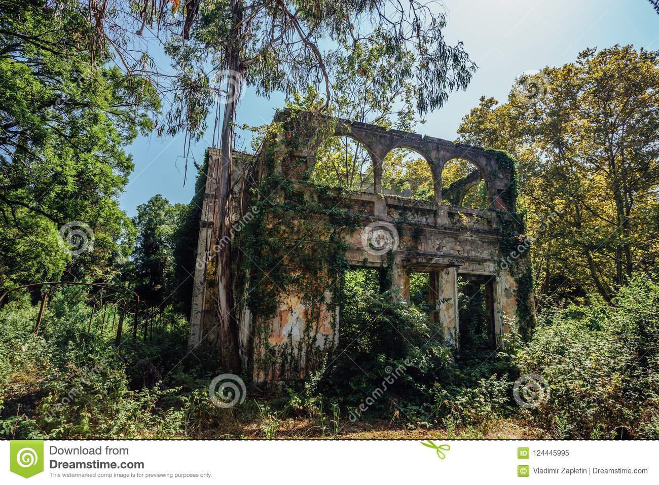 Old Overgrown By Trees Ruined Abandoned Mansion Stock Image
