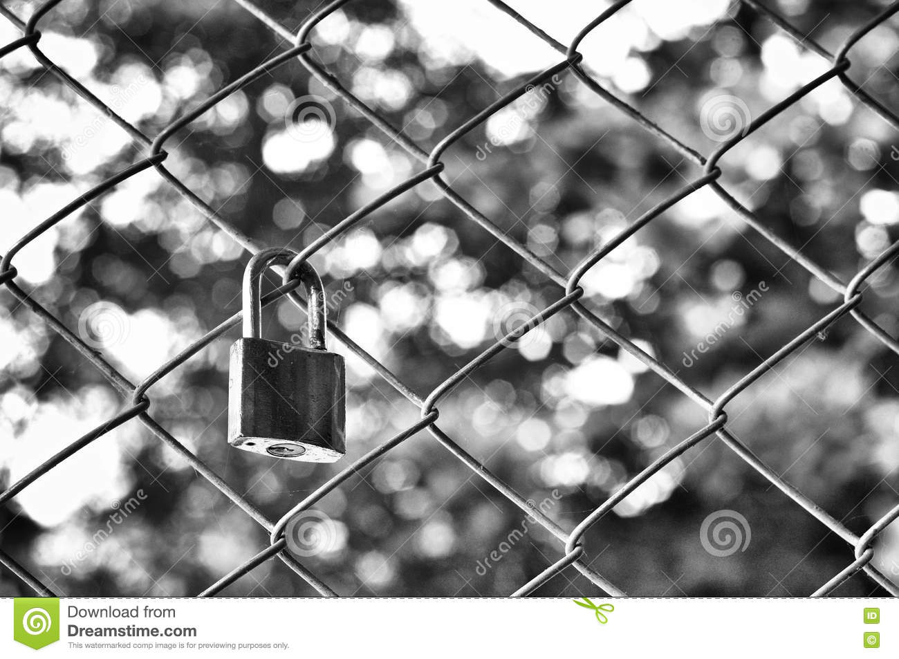 Old padlock with metal mesh fence with bokeh background in black and white photography