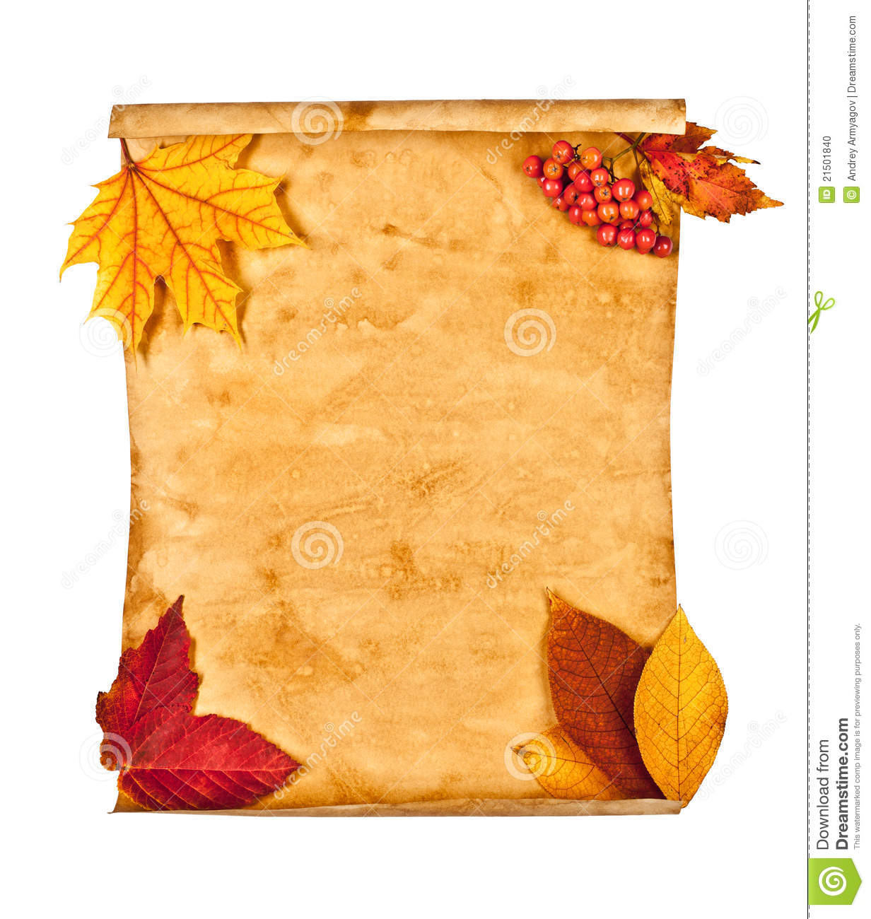 autumn leaves essay Natural features: as the rain peters out the autumn sets in the autumn comes as a relief in the wake of the nagging rain.