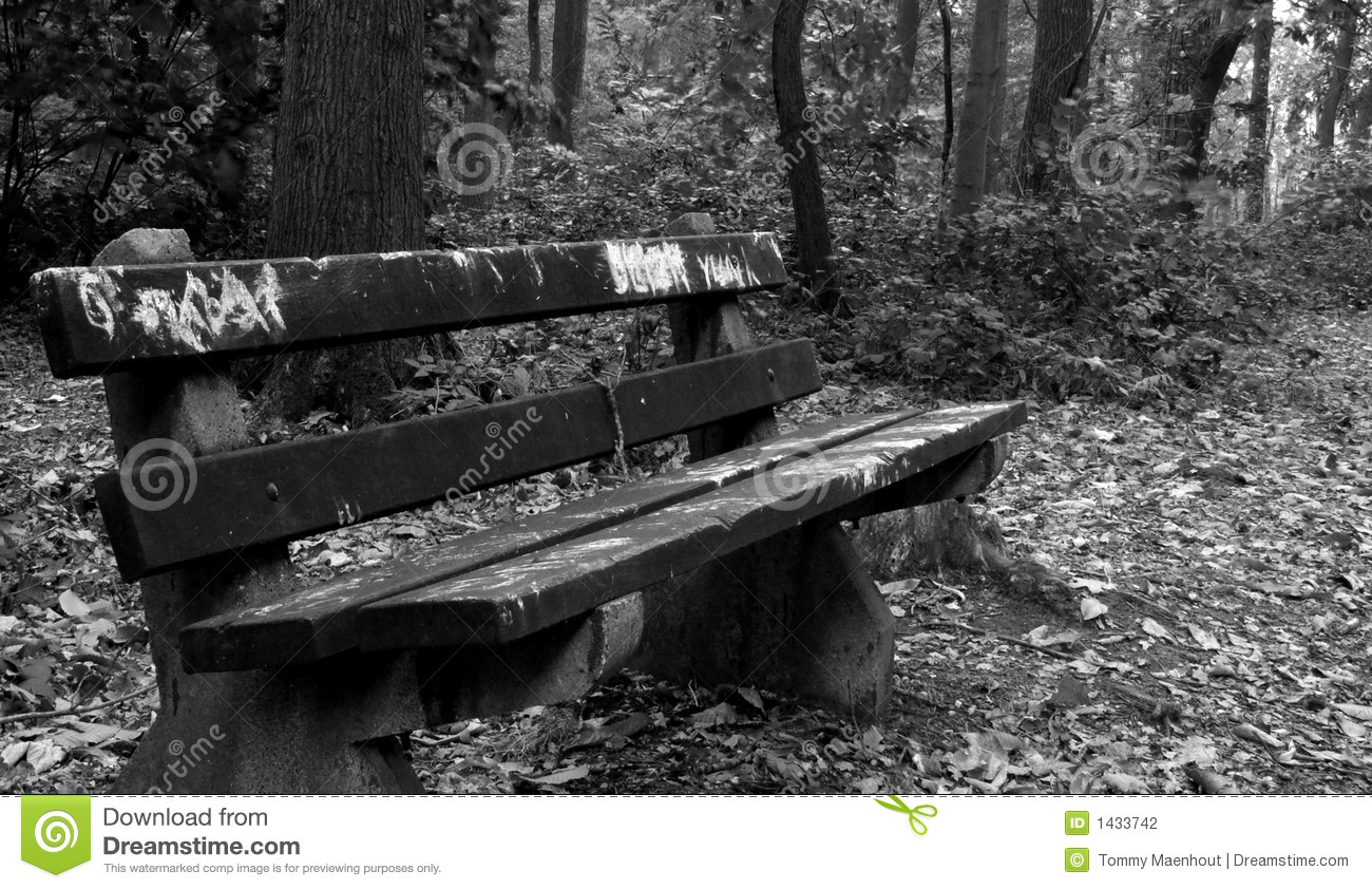 Bench - photo wallpapers, pictures with benches