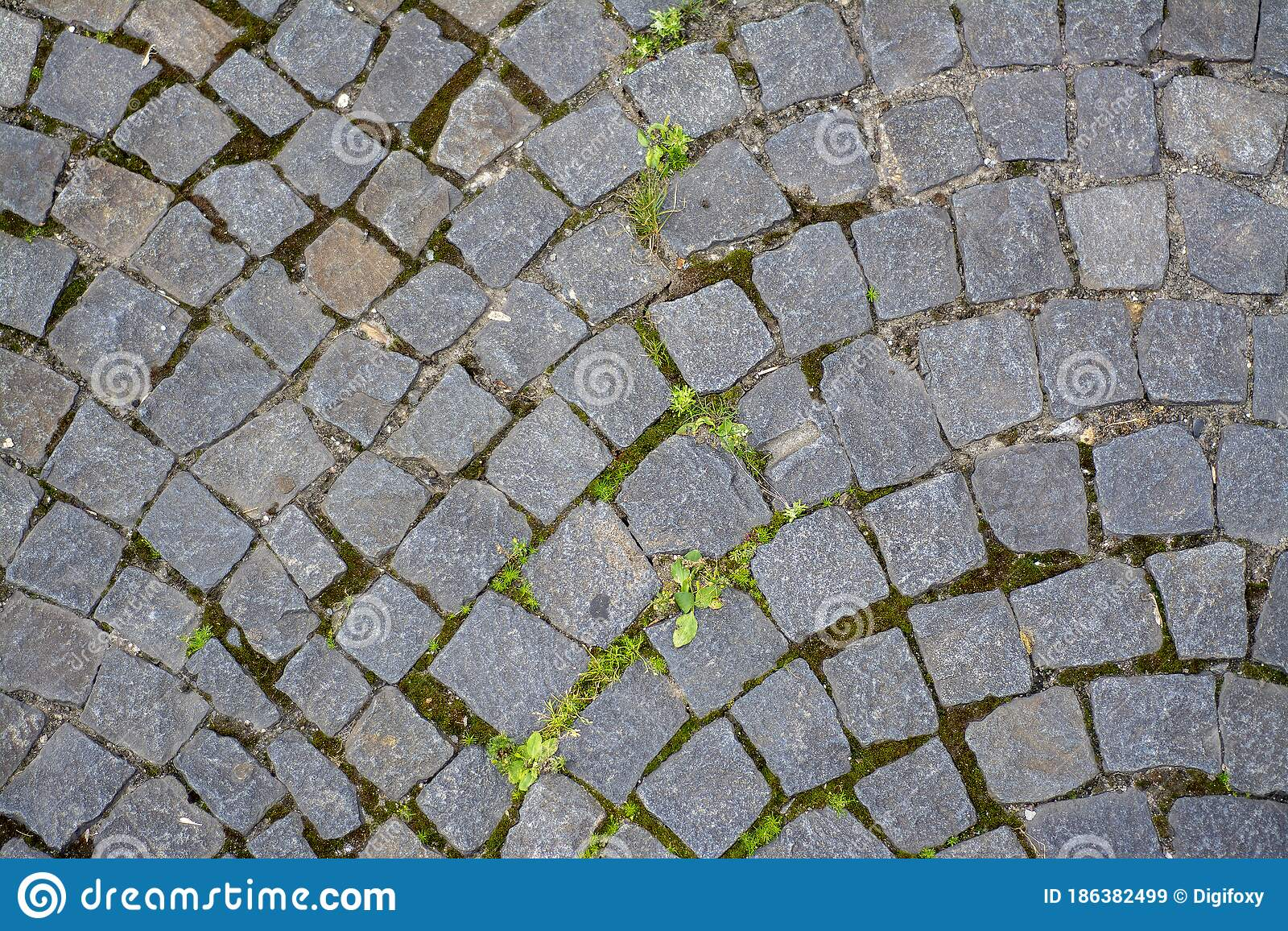 Old Pavement Of Paving Stones Stock Image Image Of Grass Street 186382499