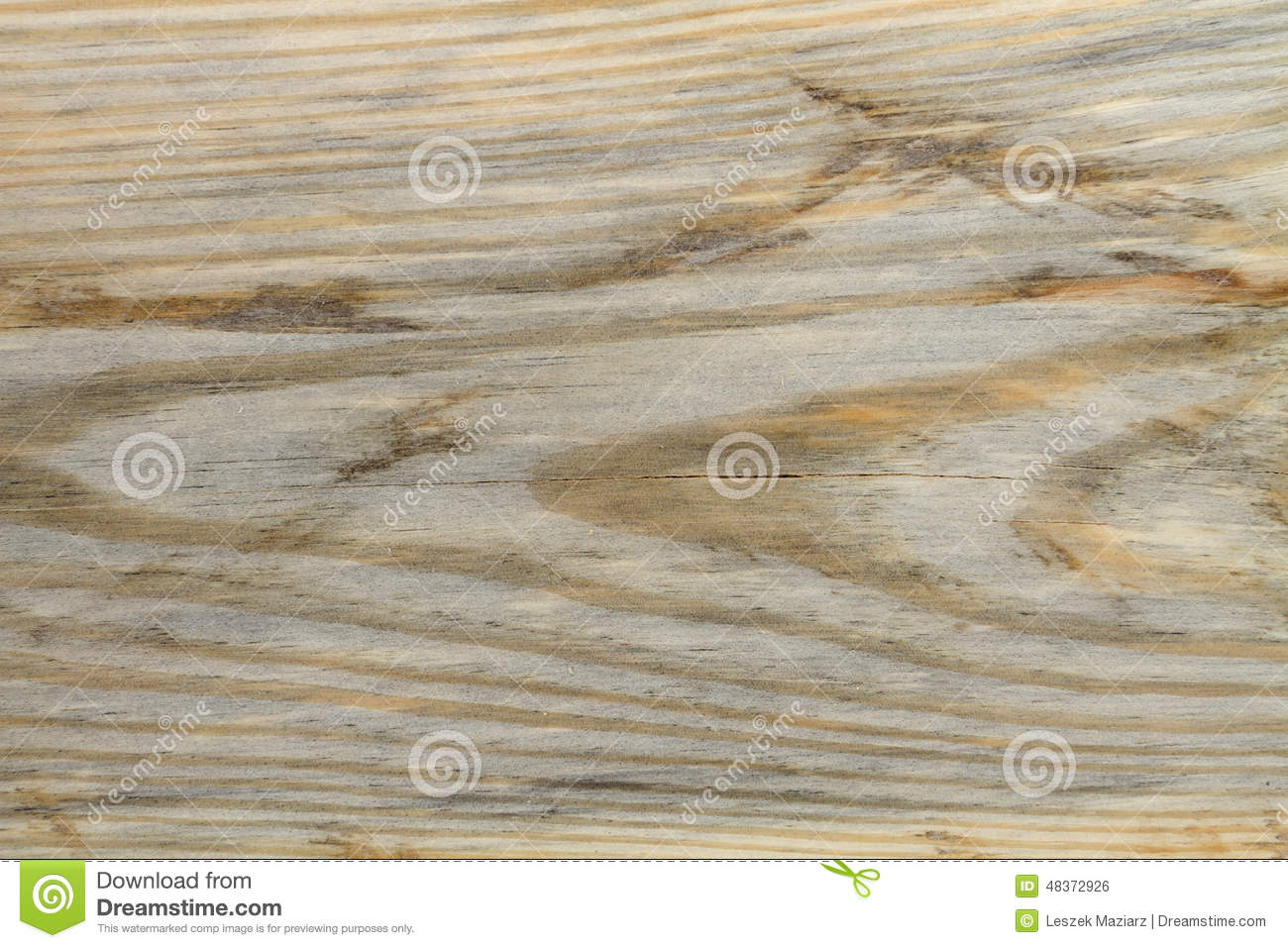 Pine Plywood Grain ~ Old pine wood grain texture stock photo image