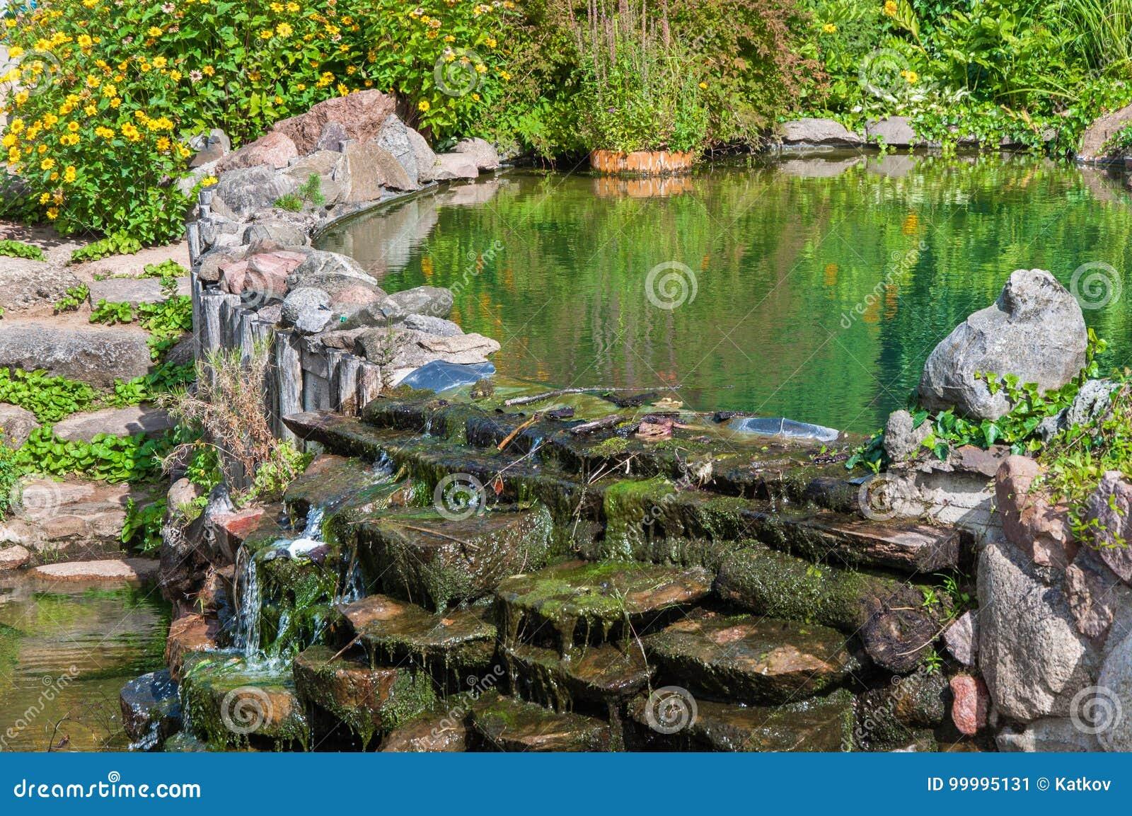 Old pond in garden