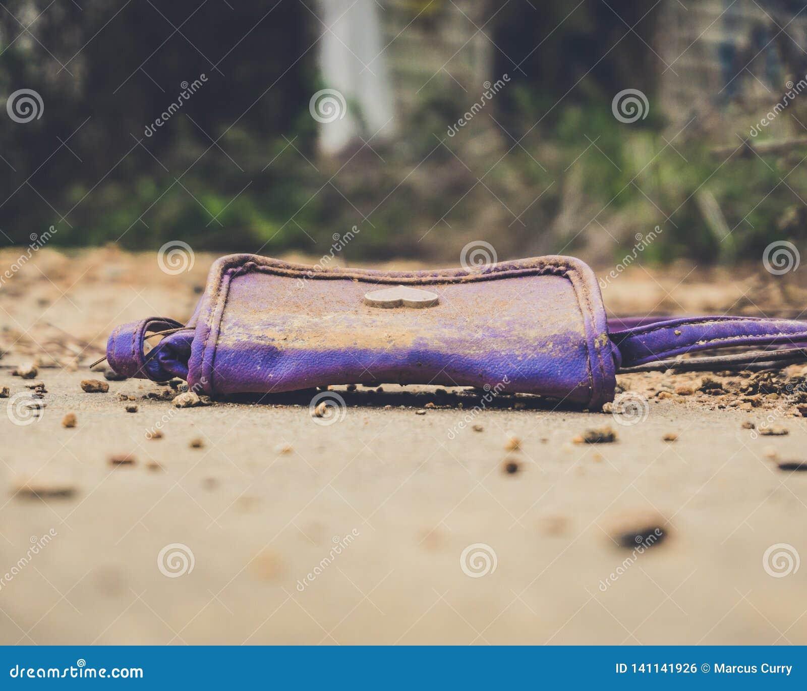 Old Purple Purse
