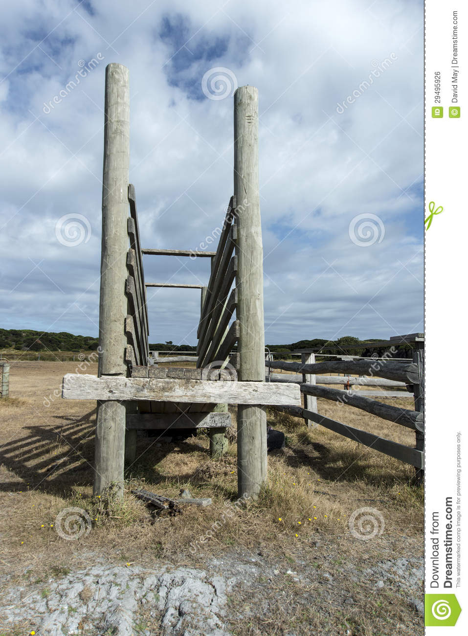 Old Race For The Cattle Yard Royalty Free Stock Image ...
