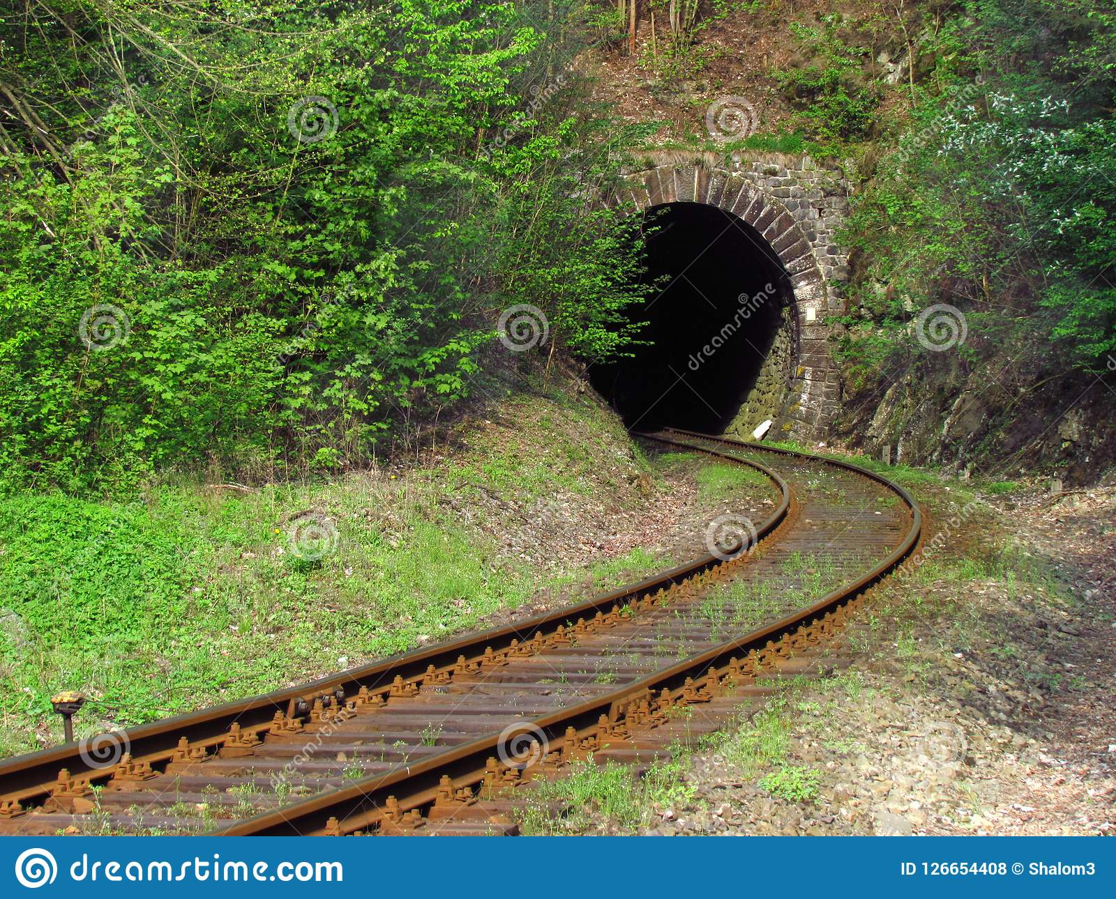Old Railway Tracks In Nature Leading Into The Tunnel Traveling By Train Stock Photo Image Of Romantic Shrub 126654408 Nature railway rails stone arch trees
