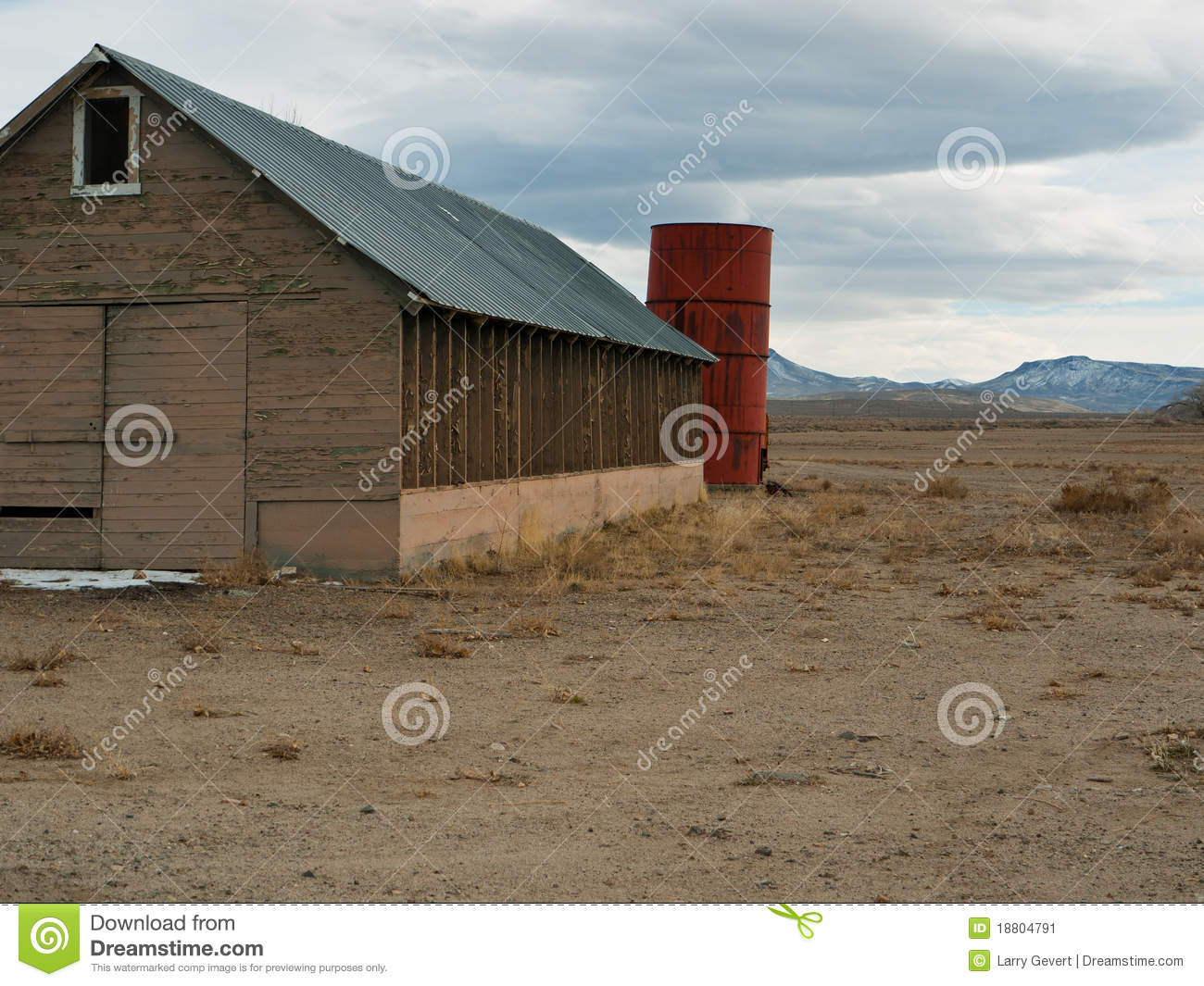 Cow on green pasture with red barn with grain silo royalty free stock - Old Ranch Buildings In Western Nevada Stock Image