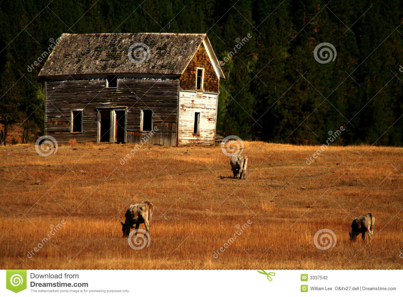 Old Ranch House 2 Stock Photo Image Of History Longevity