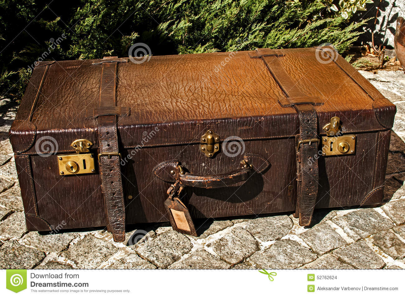 Old fashioned leather suitcase Arabella Figg Harry Potter Wiki FANDOM powered by Wikia