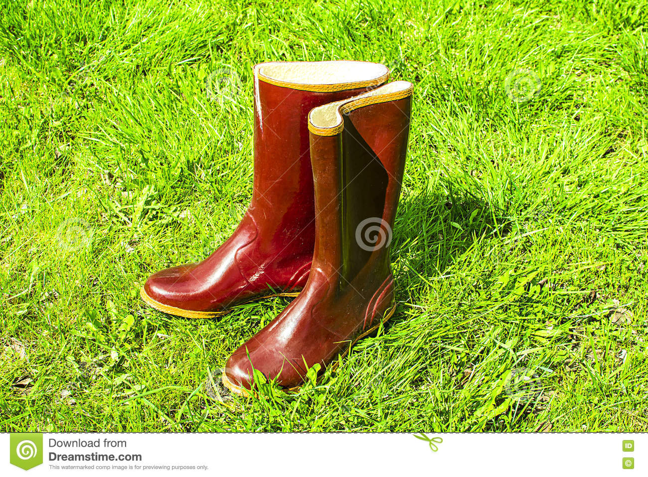 Old Rubber Boots Standing On The Grass Stock Image - Image ...