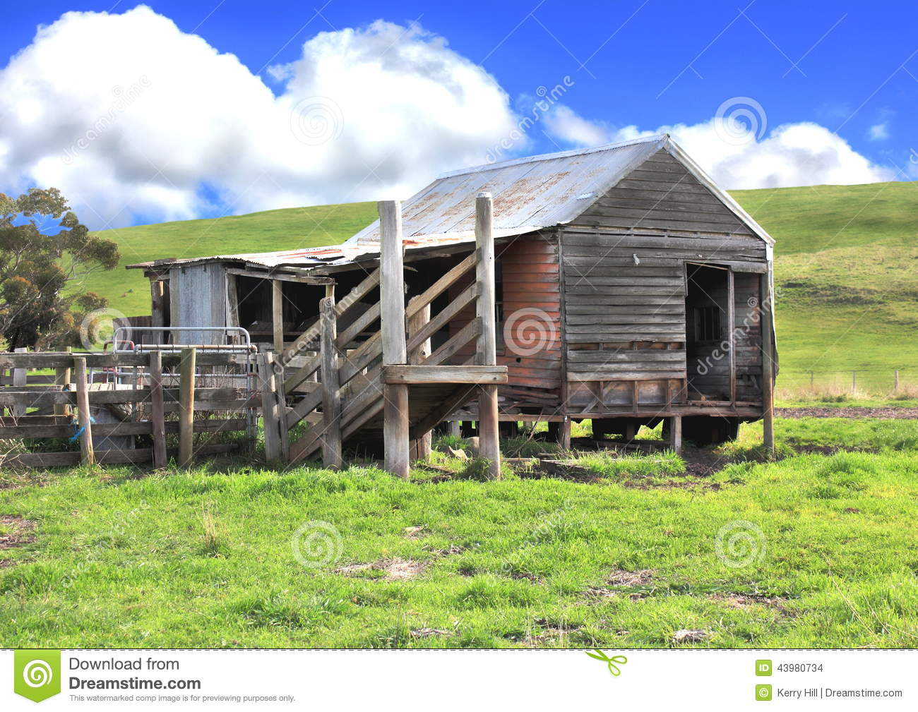 Old Rundown Shed And Cattle Yards Stock Photo Image