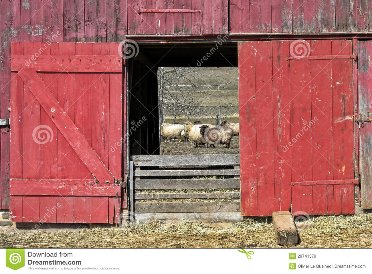 red barn doors clip art. old red wood sheep barn and flock doors clip art