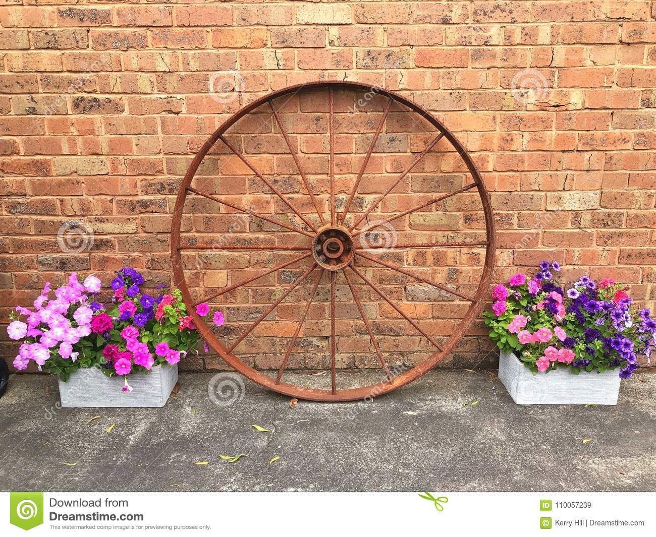 Old Rustic Wagon Wheel And Flower Display Stock Image Image Of