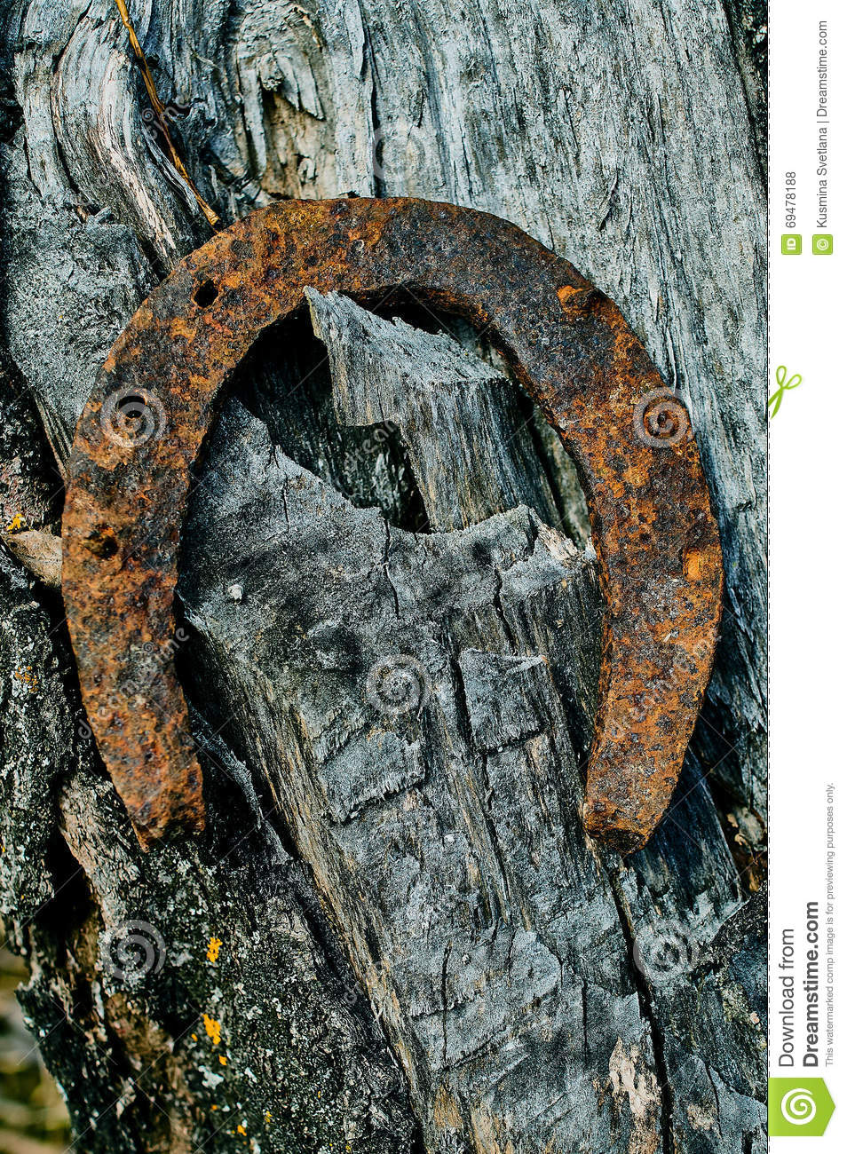 Old rusty horseshoe stock photo image 69478188 for Where to buy used horseshoes