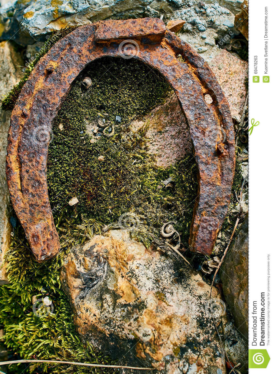 Old rusty horseshoe stock photo image 69478263 for Where to buy used horseshoes