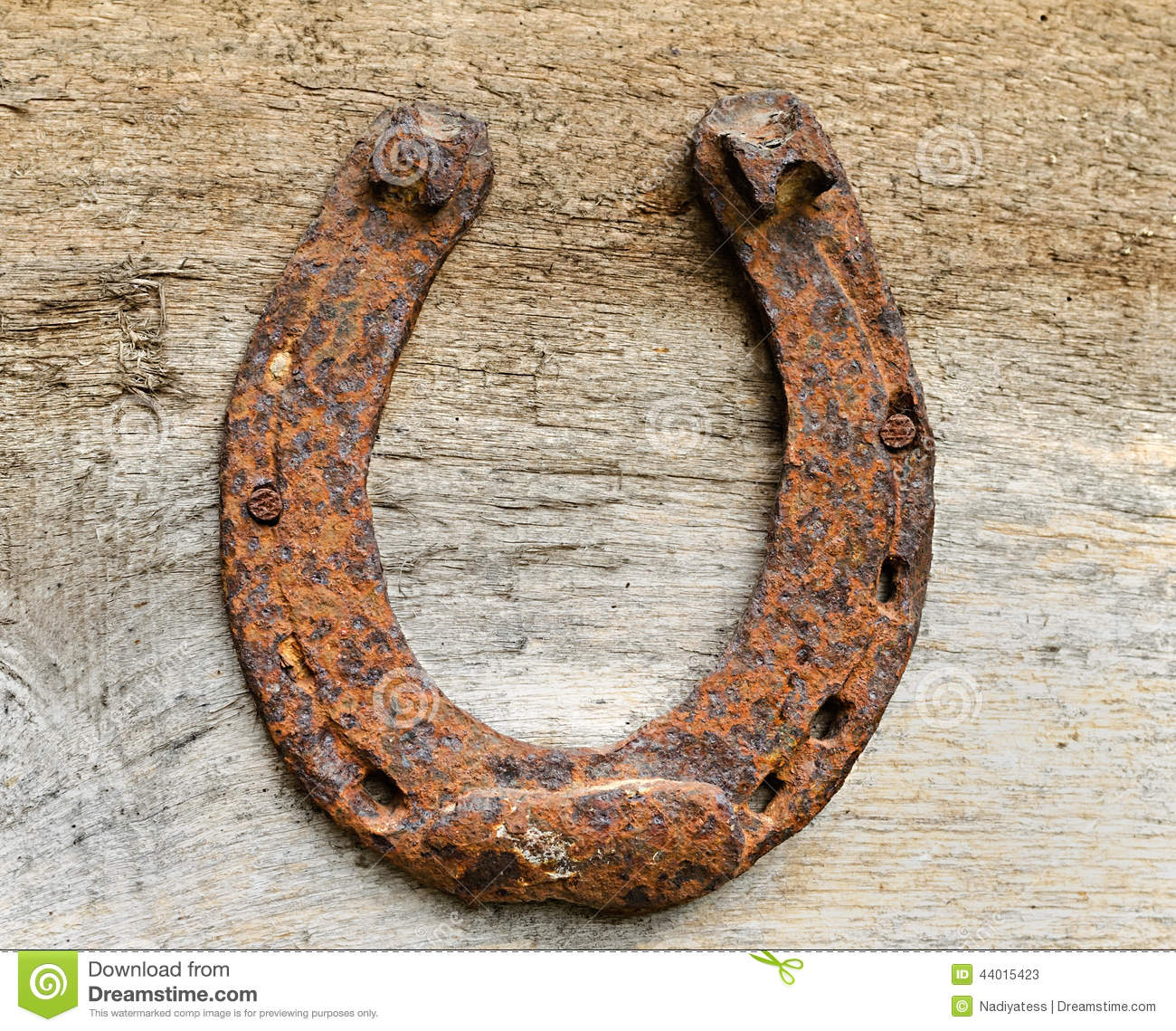 Old rusty horseshoe stock image image of iron brown for Where to buy used horseshoes