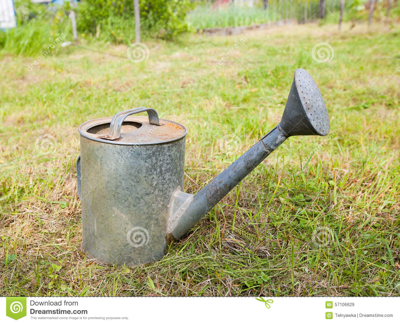 Old Rusty Watering Can Standing On Grass Stock Photo