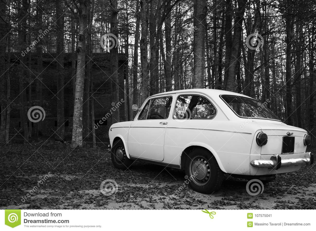 Old School Car In Forest, Italy Stock Image - Image of italy, trees ...