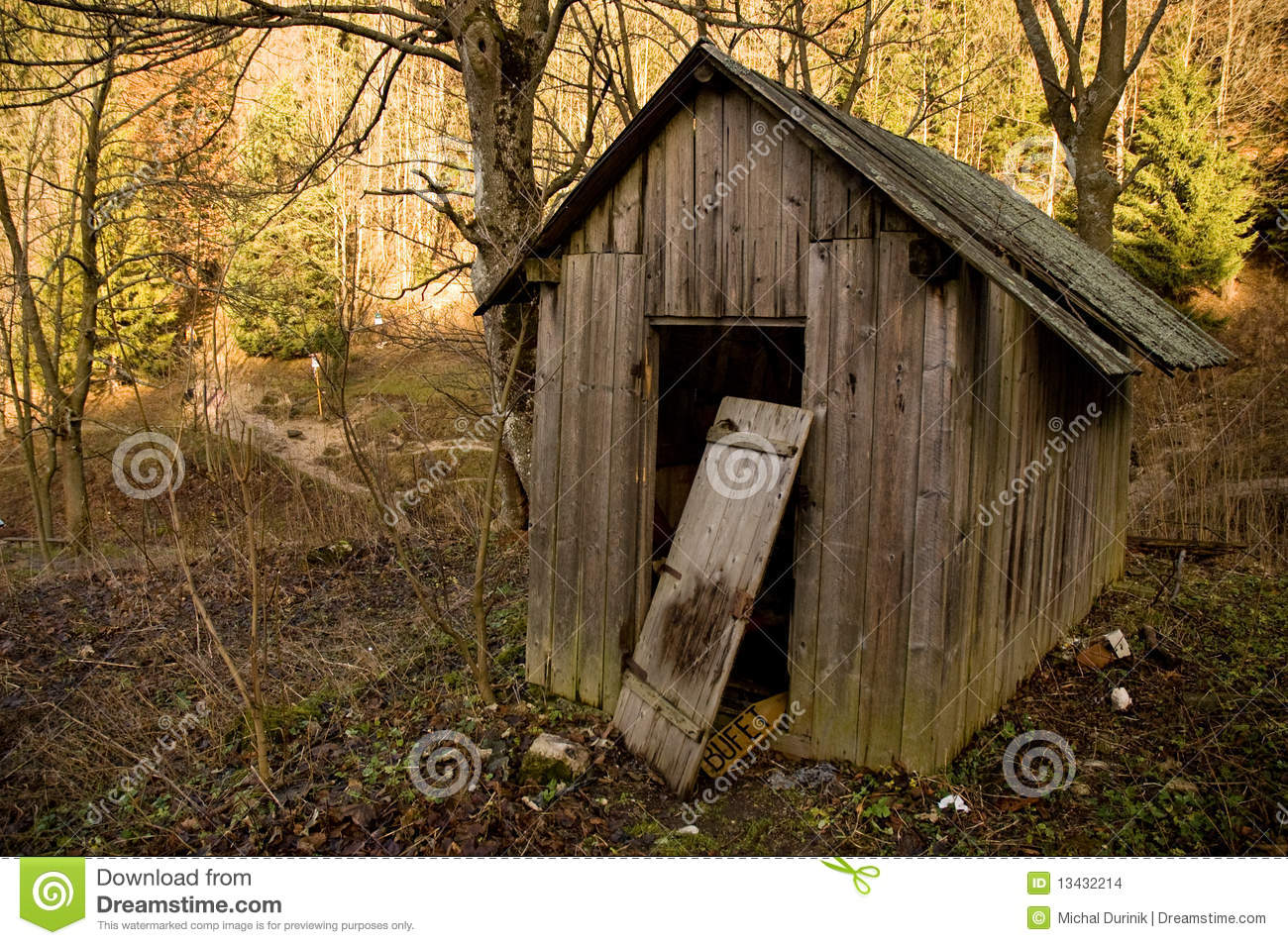 Old Shed In Forest Stock Photo Image Of Blue Farm