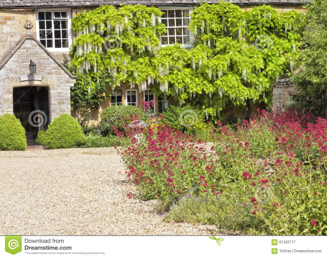 Traditional english cottage courtyard with gravel driveway stone mushroom colourful garden flower charming stone house is surrounded by white wisteria