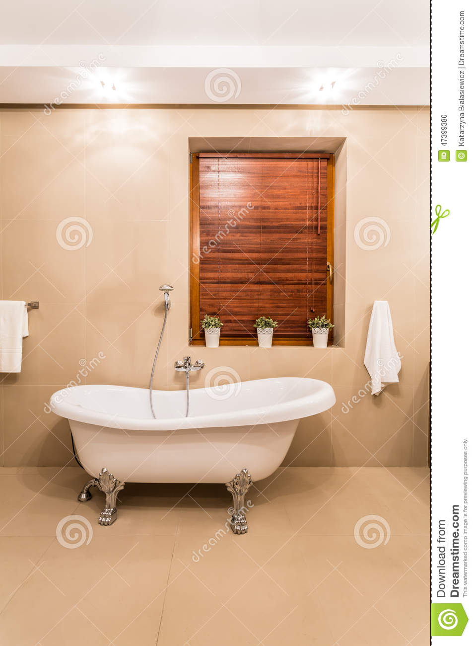 Old style bathtub stock photo image 47399380 for Bathtub styles