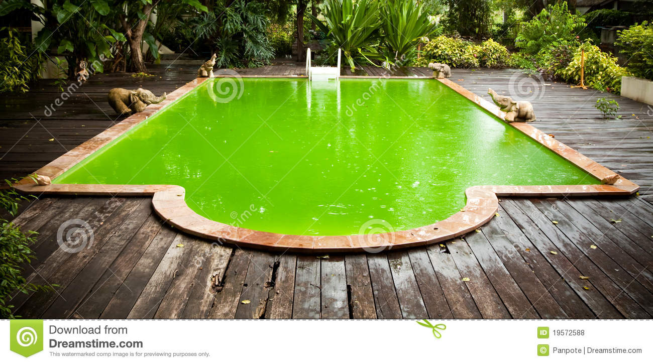 Old swimming pool stock photo image of dirty outdoor for Pool time pools