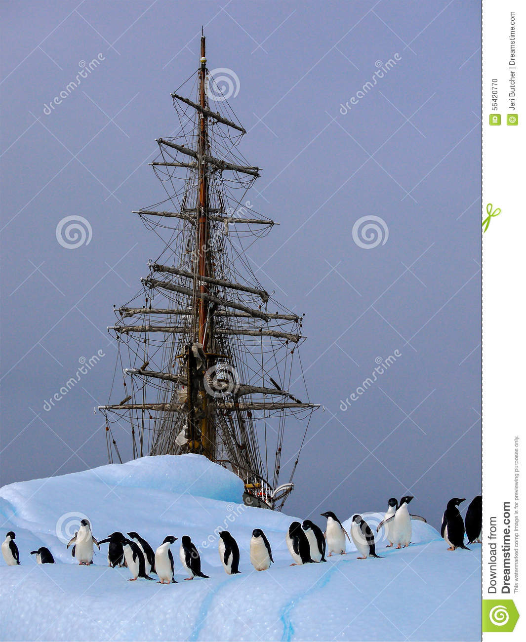 Old tallship or sailboat with adelie penguin