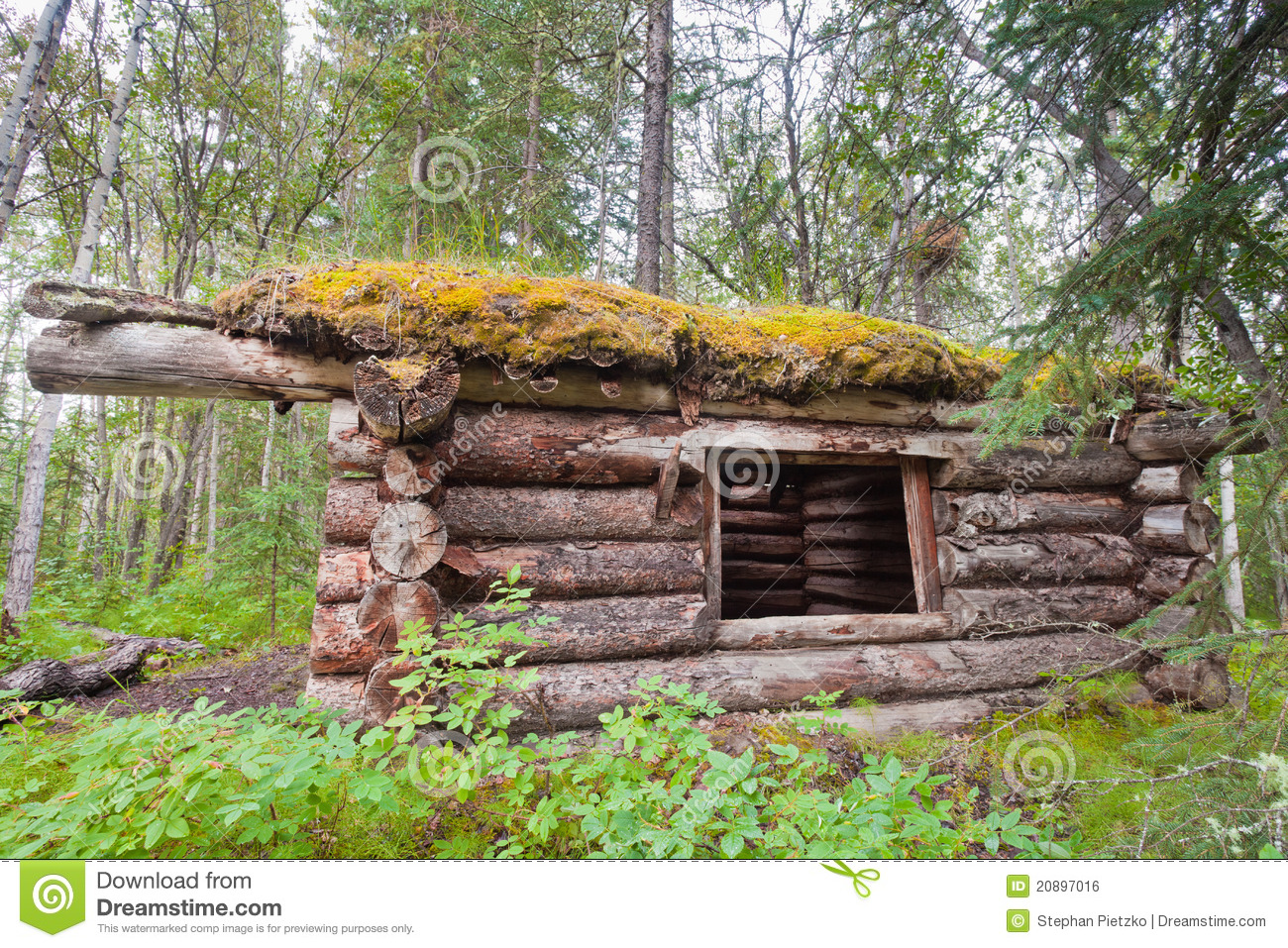 Old Traditional Log Cabin Rotting In Yukon Taiga Stock