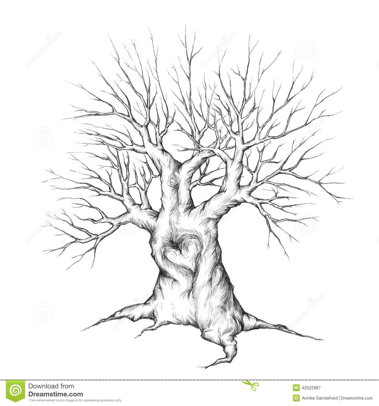 Old Tree With Heart Stock Illustration Image 42522987