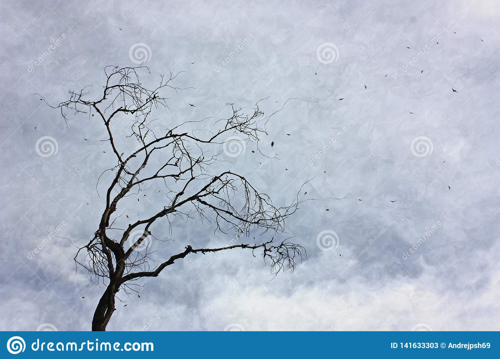 An old tree with leafy leaves against a cloudy sky.