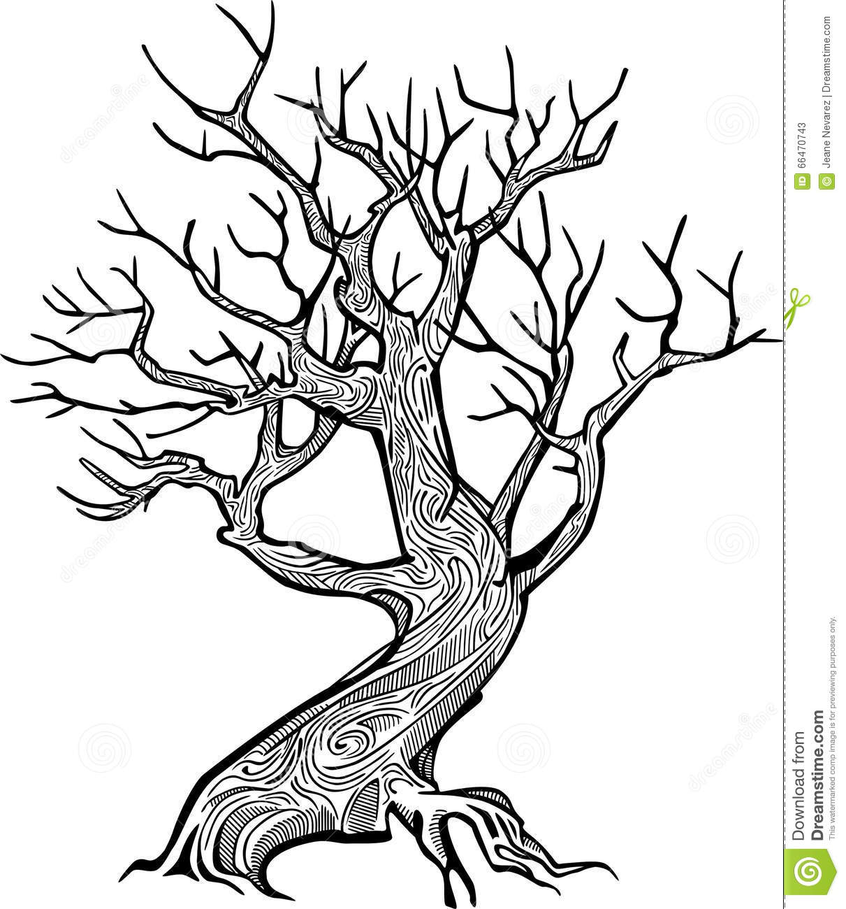 Line Art Tree : Old tree stock vector illustration of black dead object