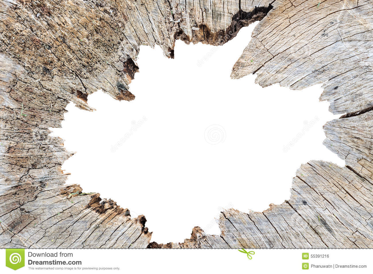 Old Tree Stump And Isolated On Middle Part Stock Photo Image Of