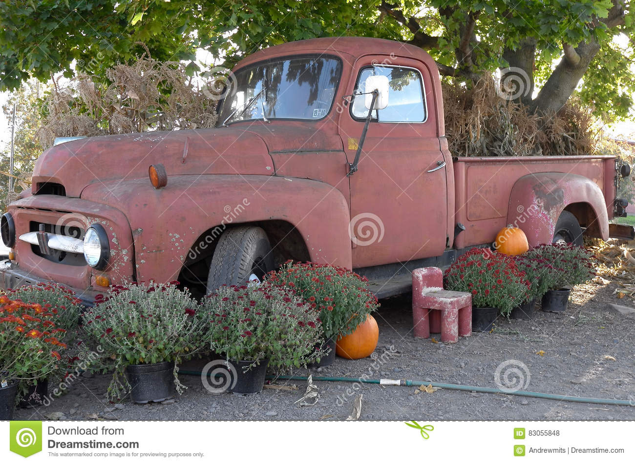 Old Truck Landscaping Feature Stock Photo - Image: 83055848