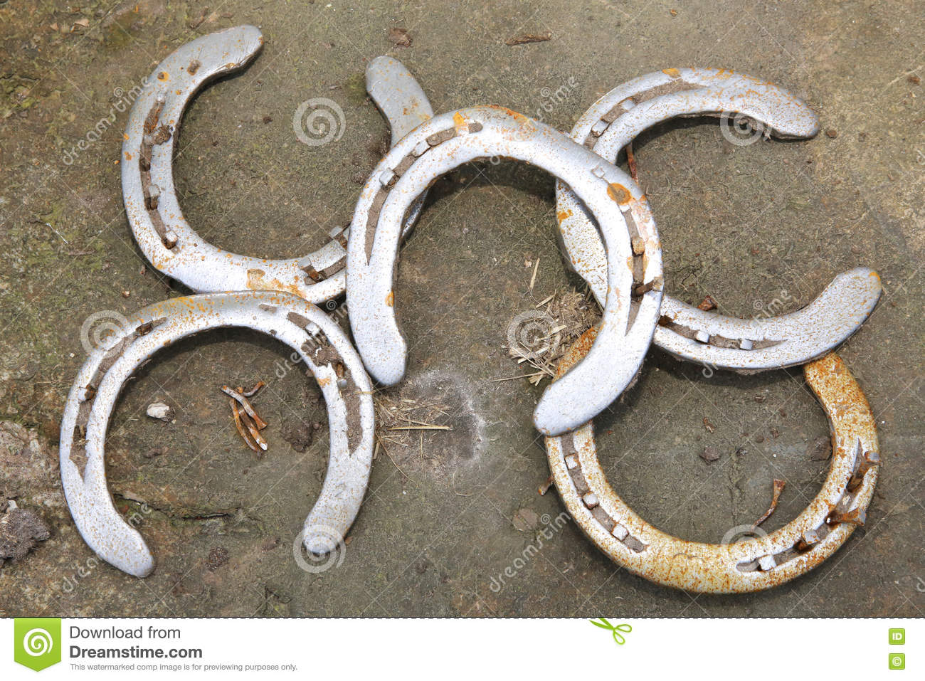 Old used horse shoes as fortune symbol stock photo image for Where to buy used horseshoes