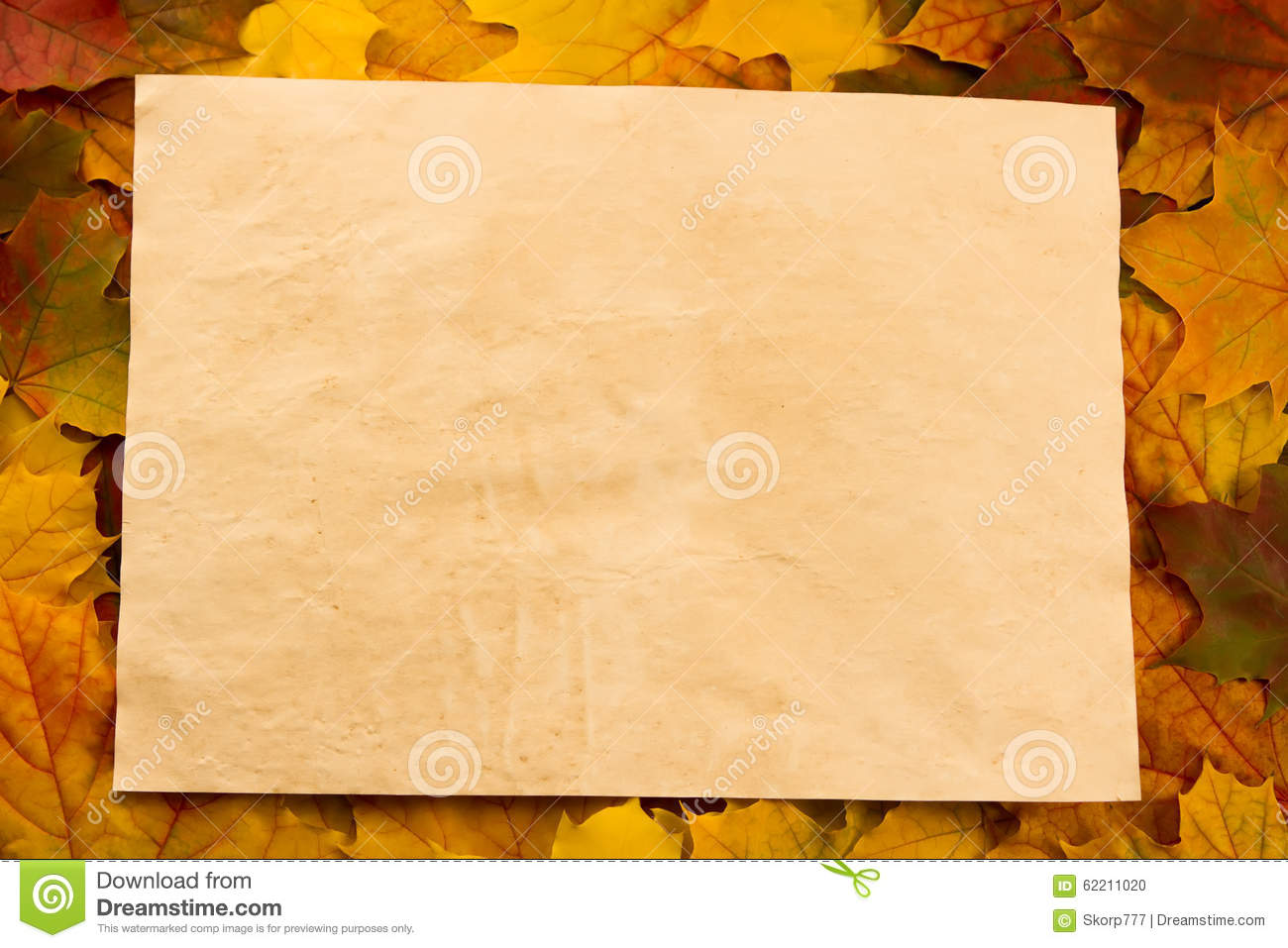 Old Vintage Blank Sheet Of Paper On Colorful Maple Leaves