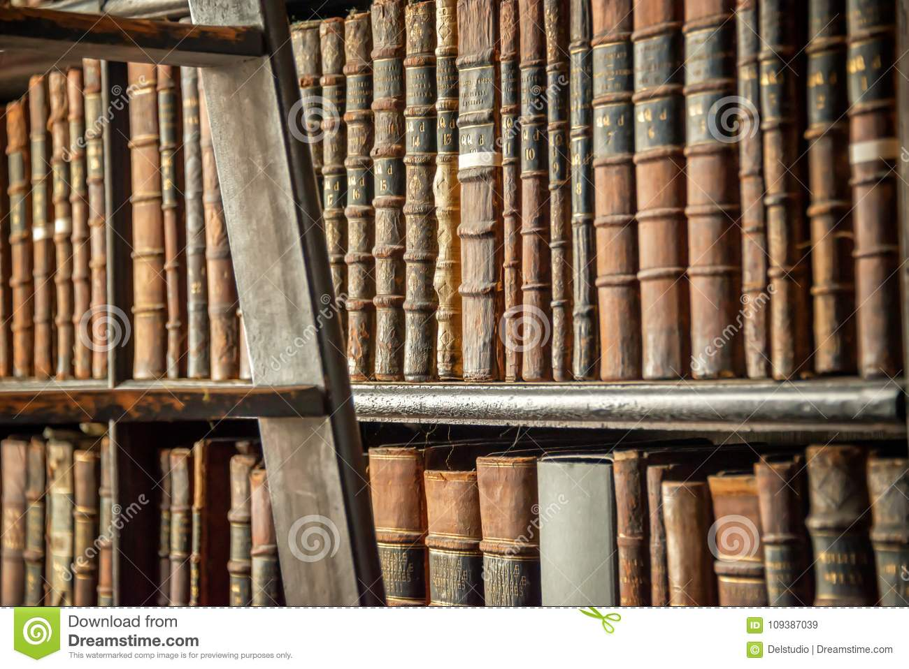 Old Vintage Books On Wooden Bookshelf And Ladder In A Library Download Preview