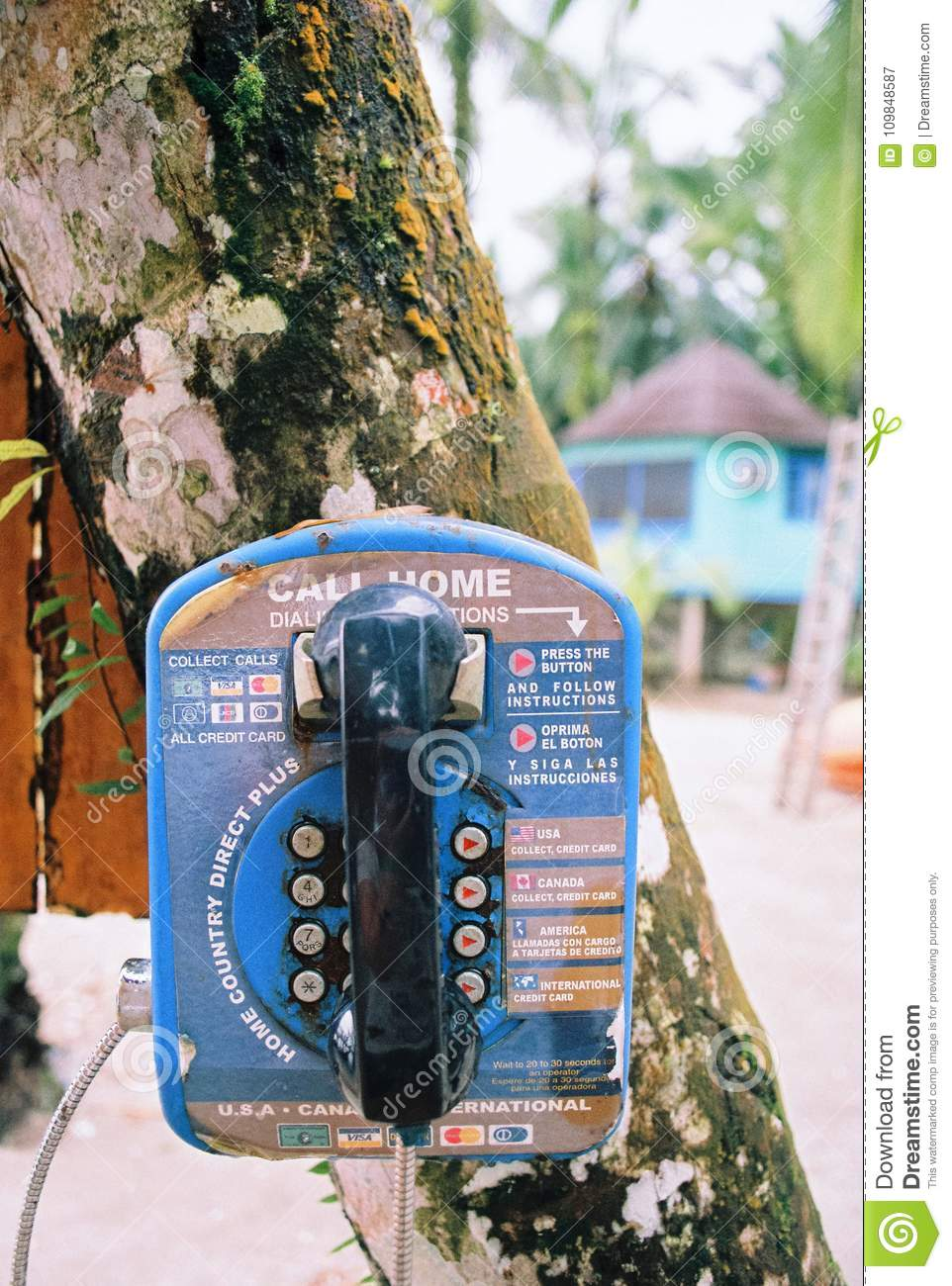 Old vintage phone hanging on a tree in Panama
