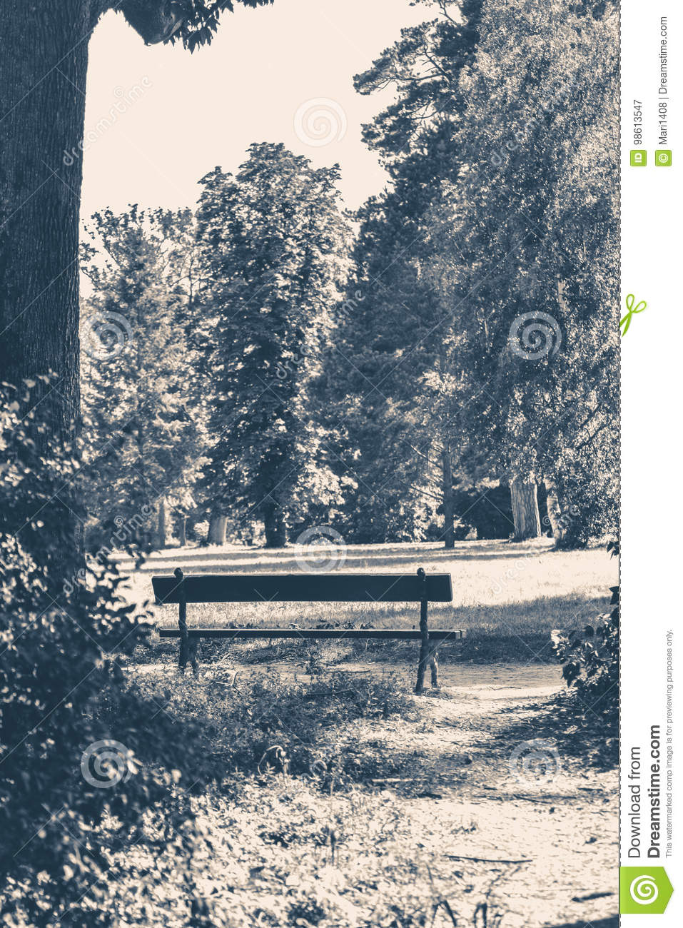 Old Vintage Photo Park Bench Sunny Day Summer Stock Image