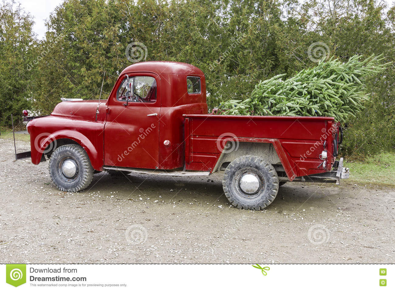 Vintage Red Truck Christmas Decor.Old Vintage Red Pickup Truck Carrying A Christmas Tree In